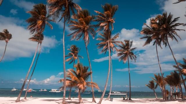 Przyszłość energii odnawialnej w Republice Dominikańskiej